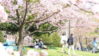 【完全保存版】札幌の歳時記(風物詩・観光イベント年間カレンダー)